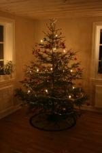 Fam. Janssons första egenhuggna julgran från den egna skogen